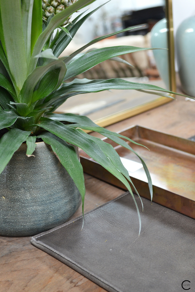 The Loft Amsterdam The Playing Circle August 2015 Green plants copper styling